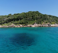 Tryllehest Similan Quest